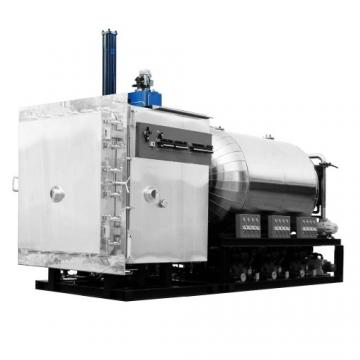 Industrial Double Cone Rotary Vacuum Dryer with Ce