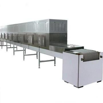 Automatic Tunnel Microwave Oven Pumpkin Dryer Sterilizing Machine